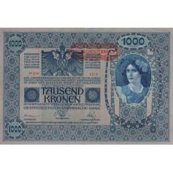 Autriche - Pick 60 - 1'000 kronen - 1919 - Etat : SUP