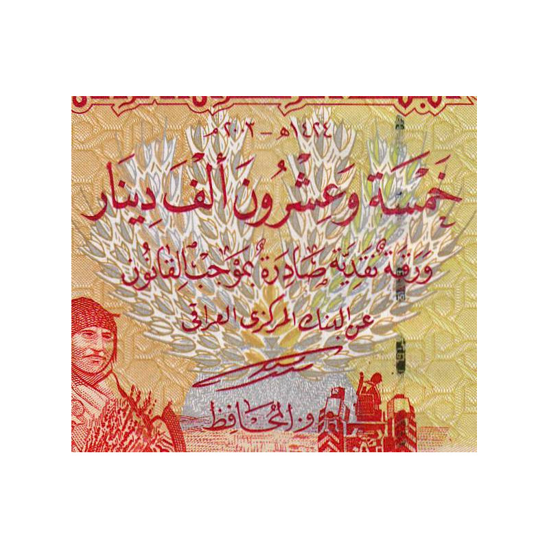 Central bank of iraq 25 dinars worth